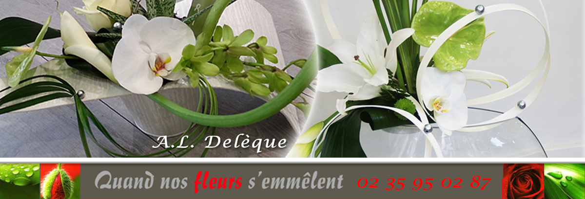 logo_quand_nos_fleurs_s_emmelent_1200